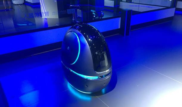Space Egg Robot Smart Service Robot